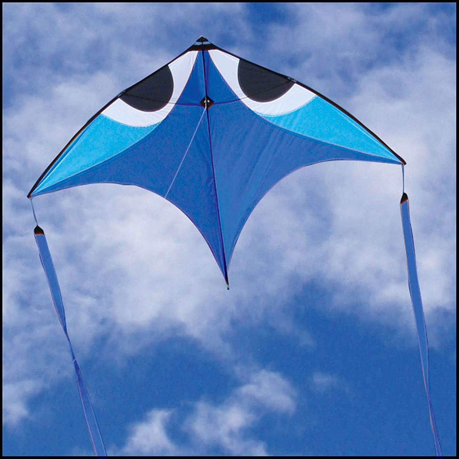 Flying WingsブルーWala glider-kite by Pacific Quest B003D0GRBU