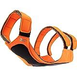 Browning Dog Protection Vest Dog Hunting Vest, Safety Orange, Large