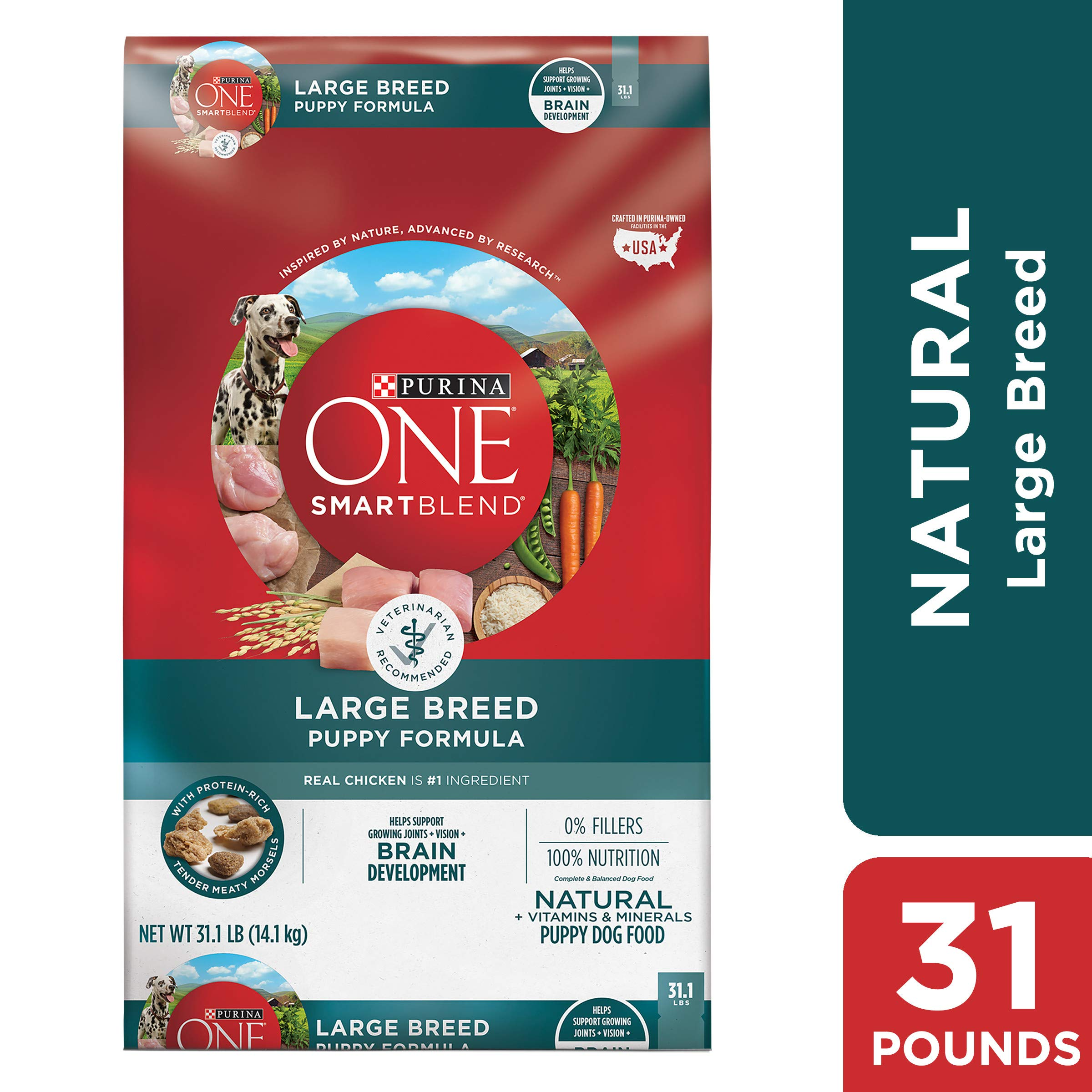 Purina ONE Natural Large Breed Dry Puppy Food, SmartBlend Large Breed Puppy Formula - 31.1 lb. Bag by Purina ONE