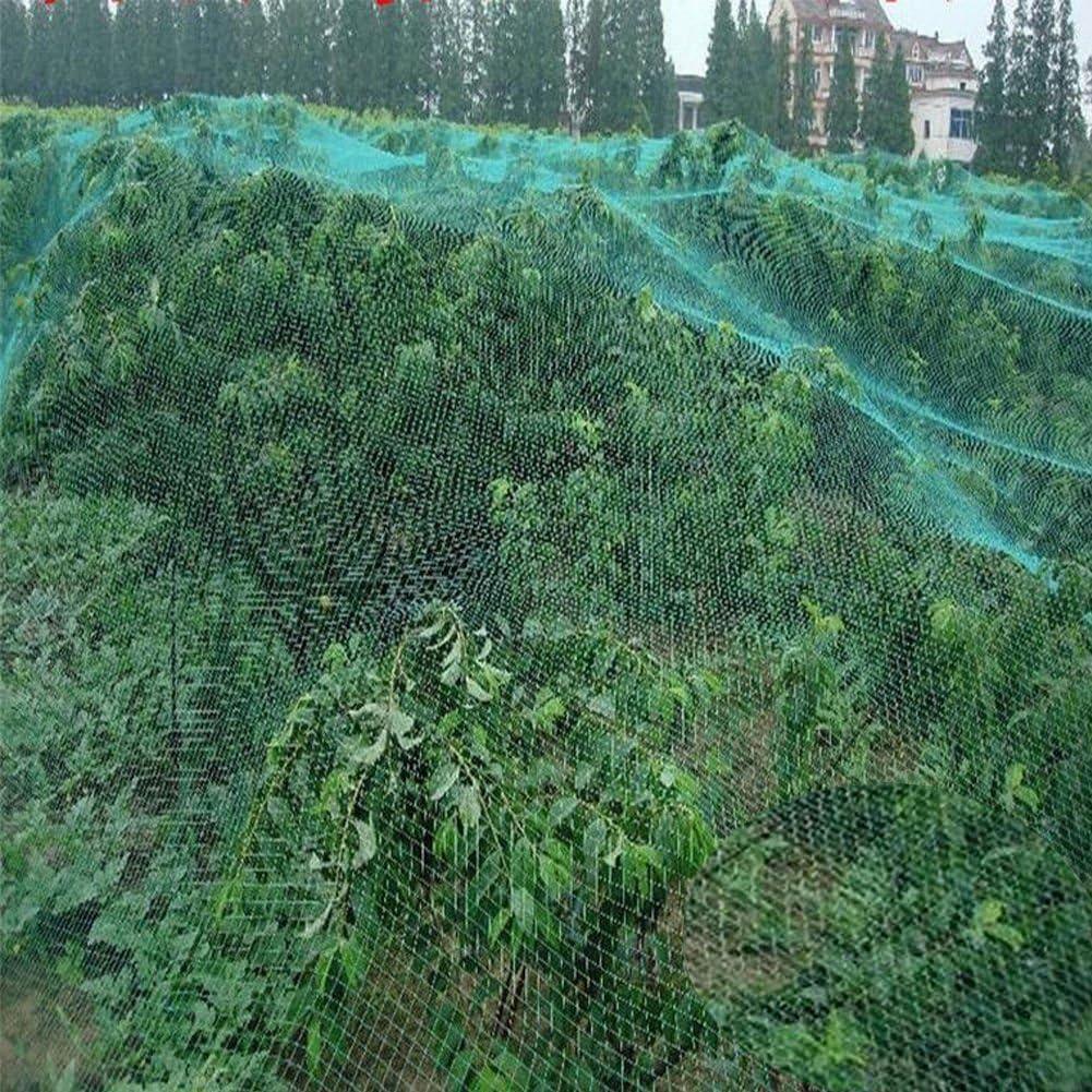 GOTOTOP 1 Unidad/2 Unidades/4 Redes de protección antipájaros para jardín, árboles frutales, Verduras y Plantas, Estanque de Agua, 4 m x 10 m (1 Unidad), Verde