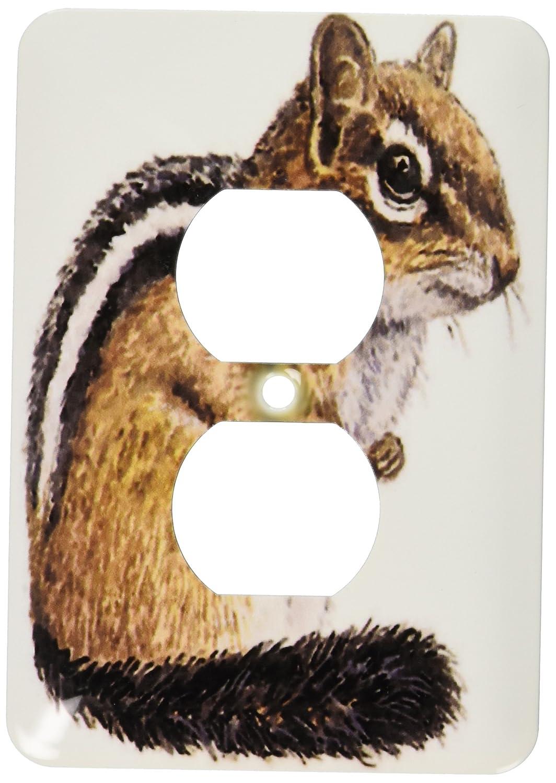 3dRose lsp/_60759/_6 Chipmunk 2 Plug Outlet Cover