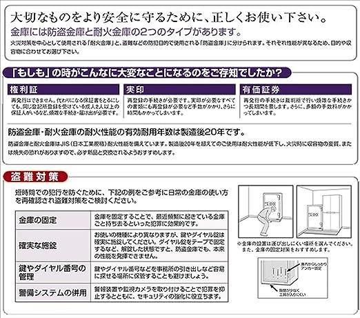 Amazon.co.jp: 日本アイエスケ...