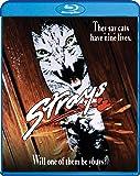 Strays [Blu-ray]