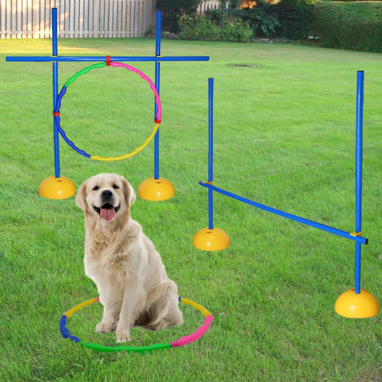 AKA Agility Training Set | Hurdle & Jump Ring| for Dog by AKA Sports Gear