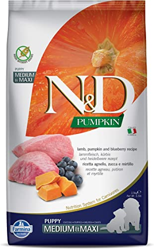 Farmina N D Dog Dry Puppy Grain-Free Pumpkin Medium Maxi Lamb Blueberry 5.5 Pound