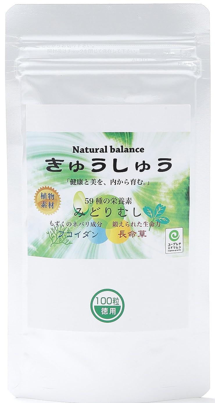 ピースピースコンサート緑の習慣 24包  武田薬品