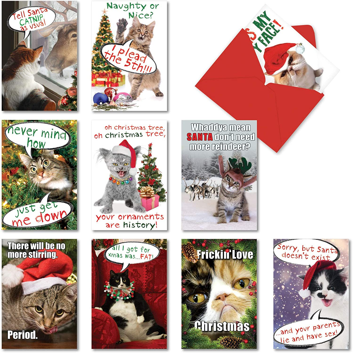Amazon Com Nobleworks 10 Funny Assorted Christmas Cards Boxed Happy Holiday Assortment Notecards With Envelopes Petigreet Cat Mass A1254 Office Products