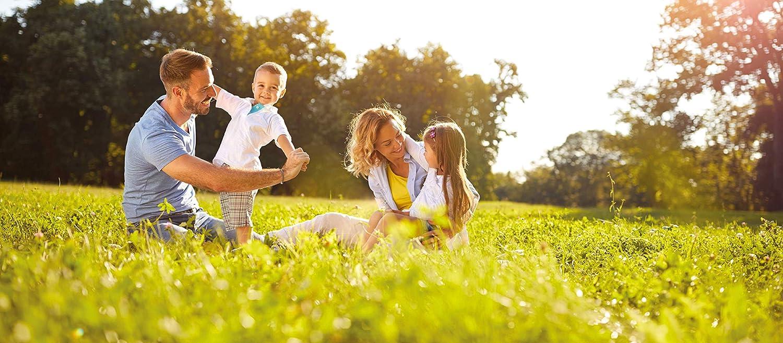 SEMILLAS DALMAU Semillas de Césped Resistentes, Mezcla Dalmau Clásica, el Clásico Césped Fino para Jardines, Mantenimiento Medio y Germinación Rápida, 1kg: Amazon.es: Jardín
