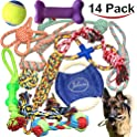 14Pk. Jalousie Puppy Dog Rope Toy Assortment
