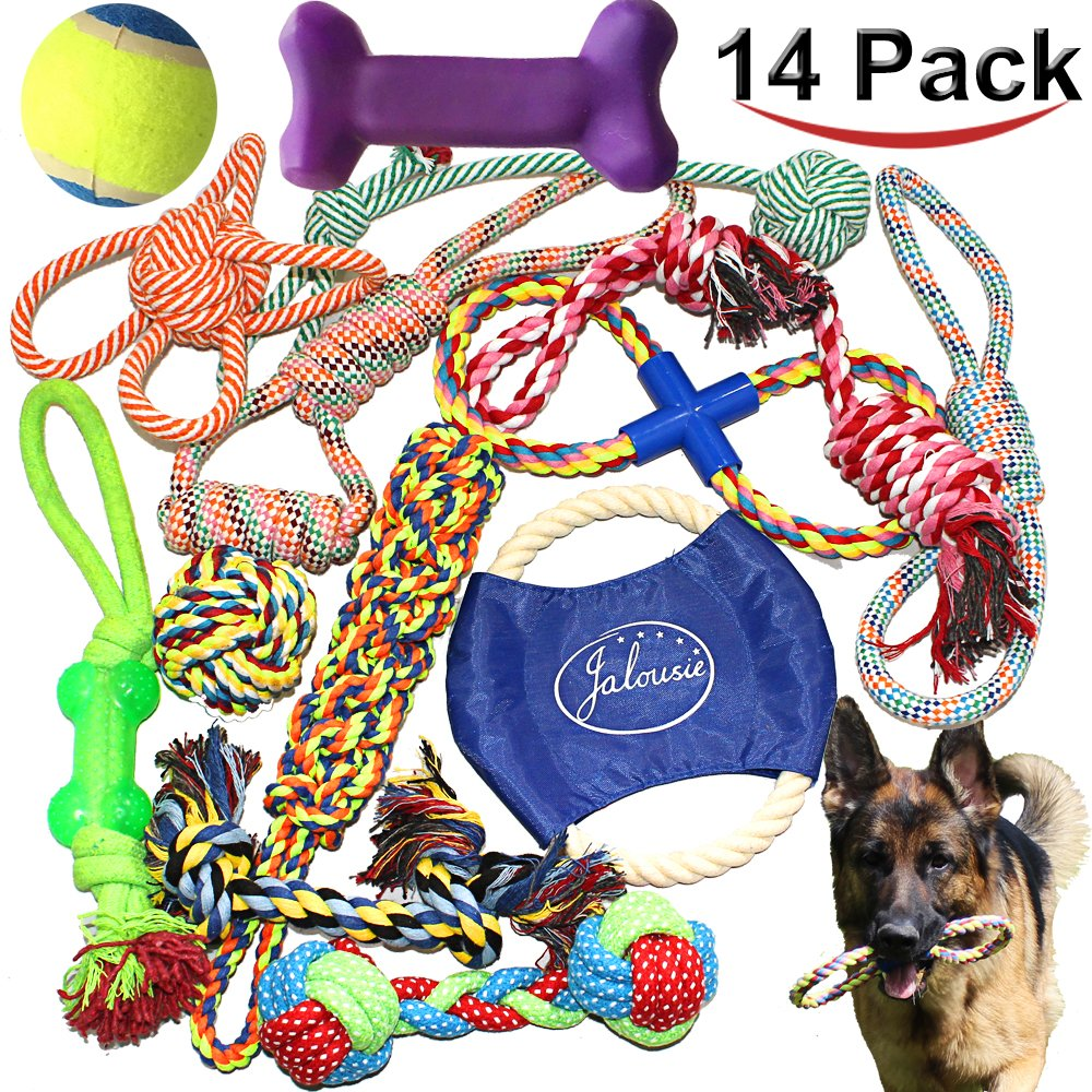 Amazon.com: Multipet 6 Pack of Loofa Dog Toys, Assorted