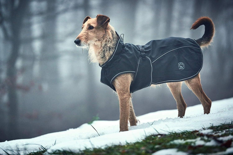 Hundemantel Hund im Wald Schnee