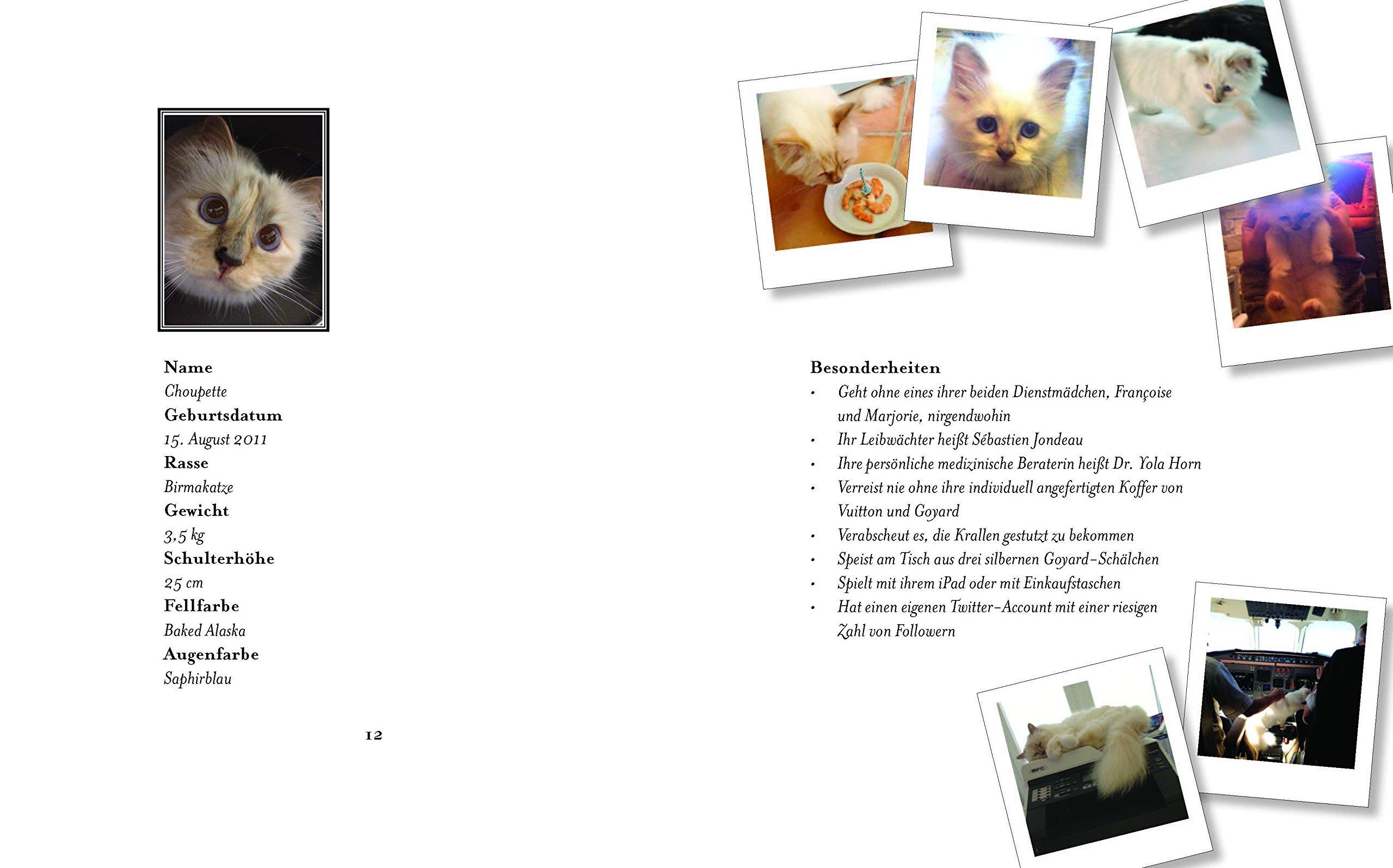 Choupette: Aus dem Leben einer Katze an der Seite von Karl ...