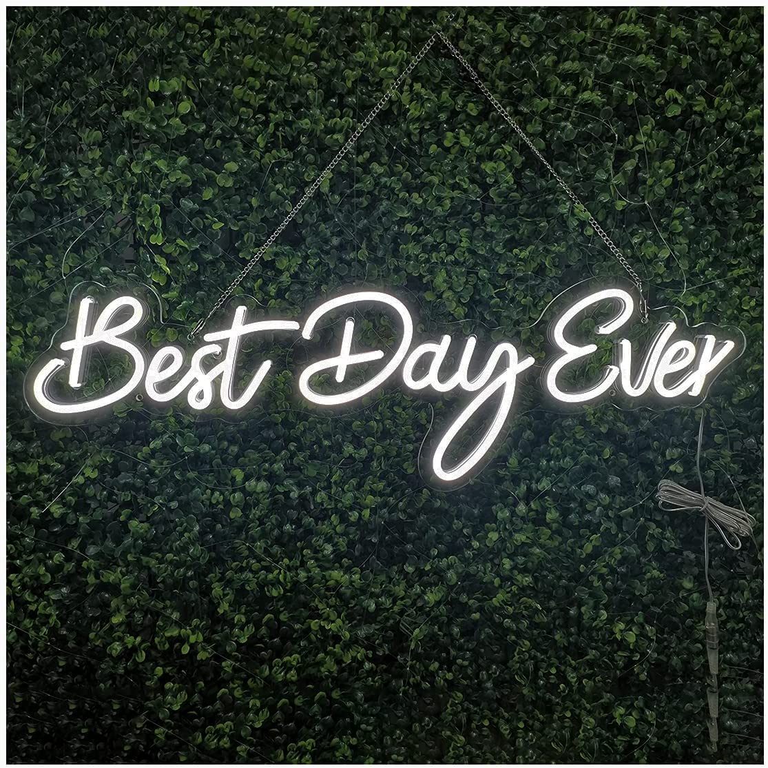 SYLHOME LED Neon Light Signs 12V Best Day Ever 26