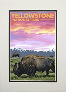 product image for Yellowstone National Park, Wyoming - Bison and Sunset (11x14 Double-Matted Art Print, Wall Decor Ready to Frame)