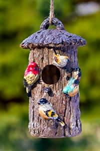 Dawhud Direct Oak Tree Decorative Hand-Painted Bird House
