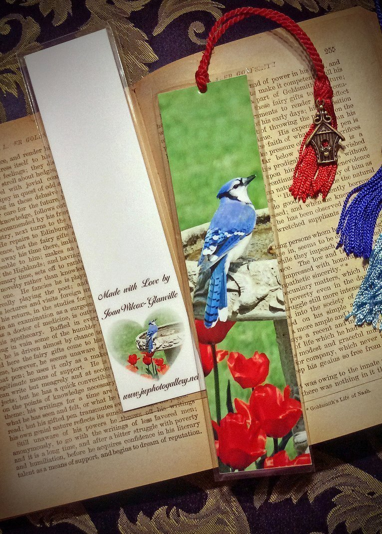 Spring Bluejay Blue Jay Bird & Red Tulips at Birdbath Bookmark w/ Antique Bronze Birdhouse Charm Fine Art Photography Photo Laminated Handmade Bookmark by JWPhotography Gallery