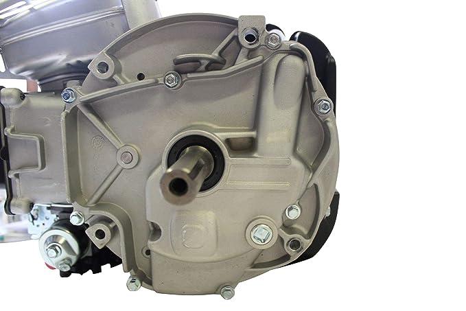 Briggs & Stratton Motor 750 IC 5 PS volante de inercia pesado 22,2 ...