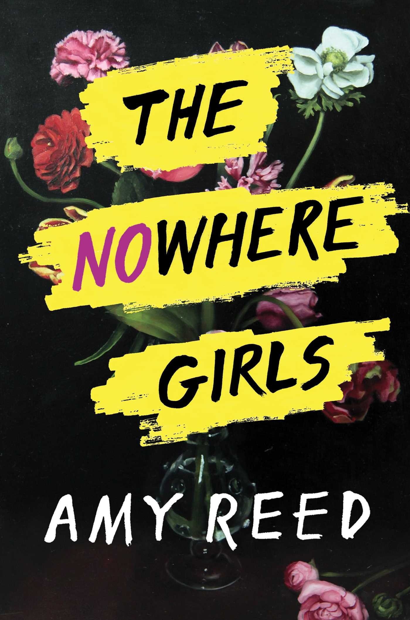 Image result for amy reed the nowhere girls