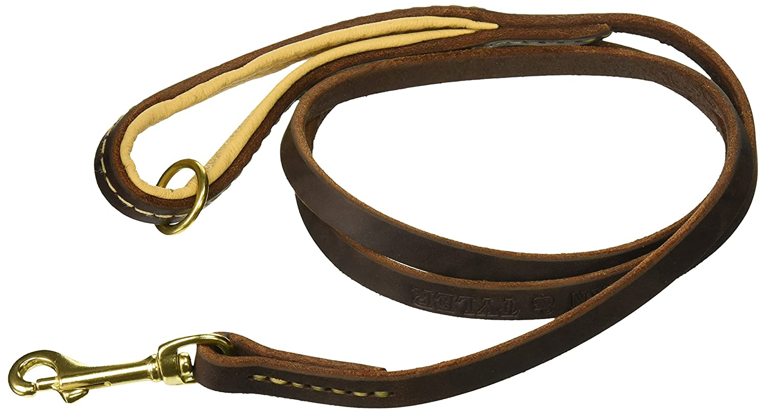 Dean & Tyler Soft Touch 1 2-Inch Brown Padding Dog Leash with Brown Ring on Handle and Solid Brass Snap Hook, 5-Feet by 1 2-Inch