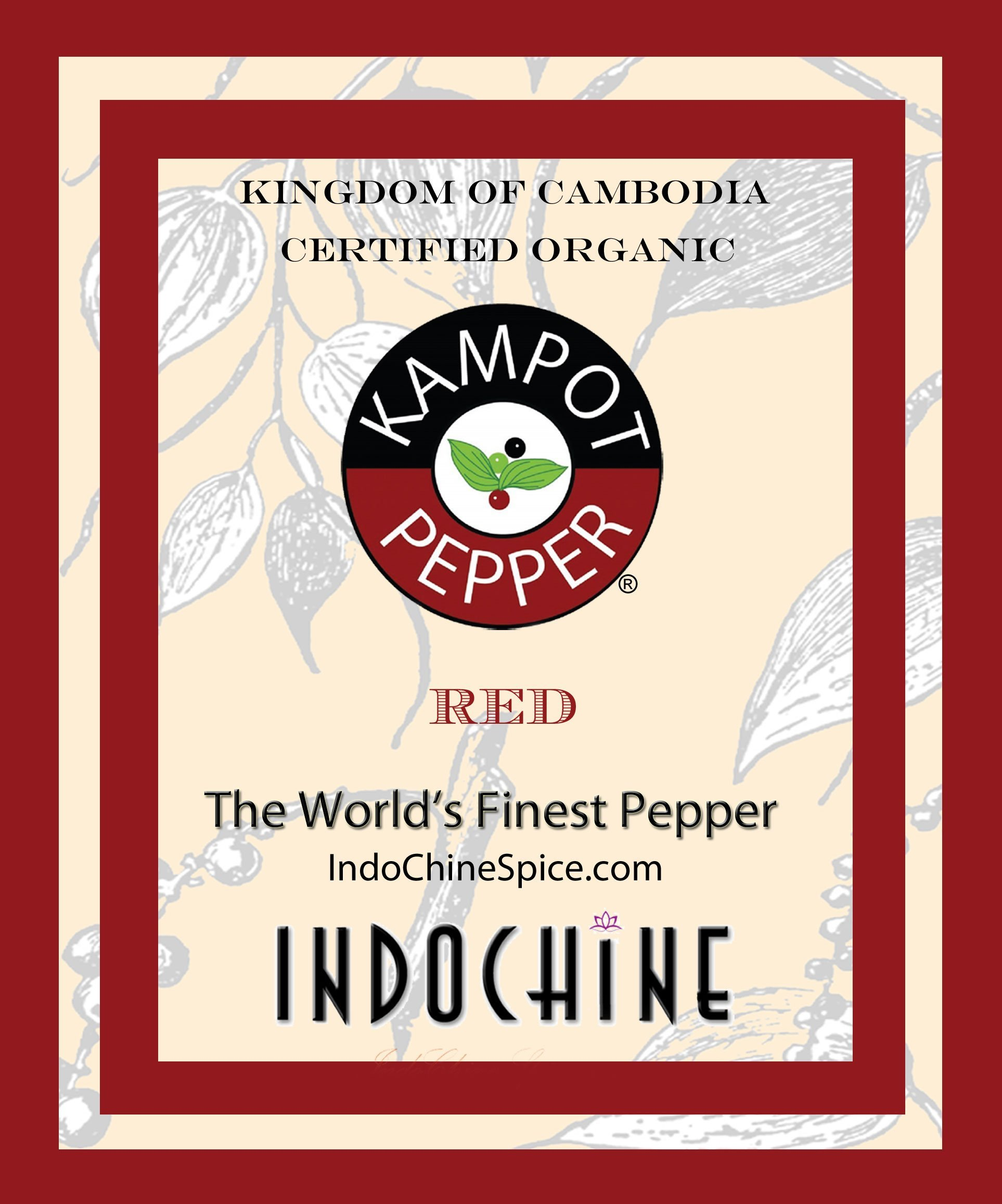Amazon.com : Organic Kampot Pepper - Rare Cambodian Peppercorns ...