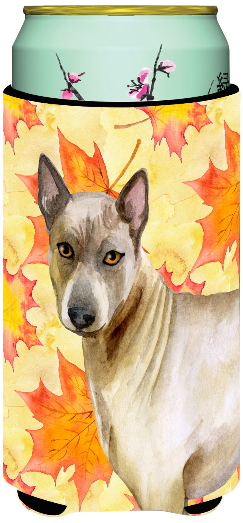 Caroline's Treasures BB9941TBC Thai Ridgeback Fall Decorative Can Hugger, Tall Boy, Multicolor