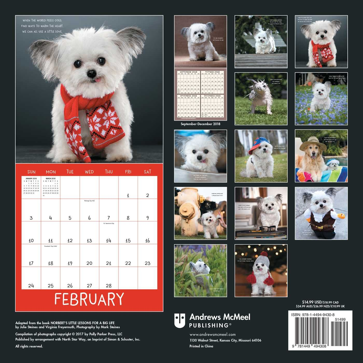Norbert's Little Lessons for a Big Life 2019 Wall Calendar by Andrews McMeel Publishing (Image #2)