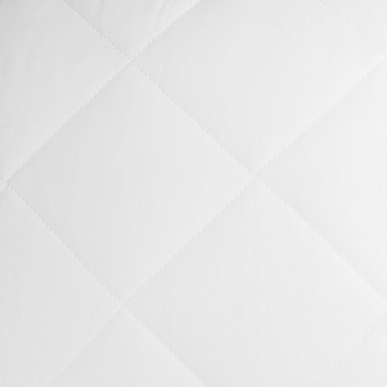 ZOLLNER 2 Rellenos de cojin 60x60 cm, 475 g/Unidad, en Otras Medidas: Amazon.es: Hogar