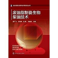 废油脂制备生物柴油技术