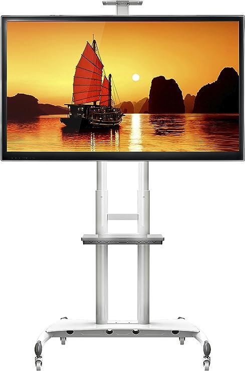 STANDMOUNTS Supporto Per TV A Pavimento Per LCD LED Plasma 55  80 Pollici PORTA  TV