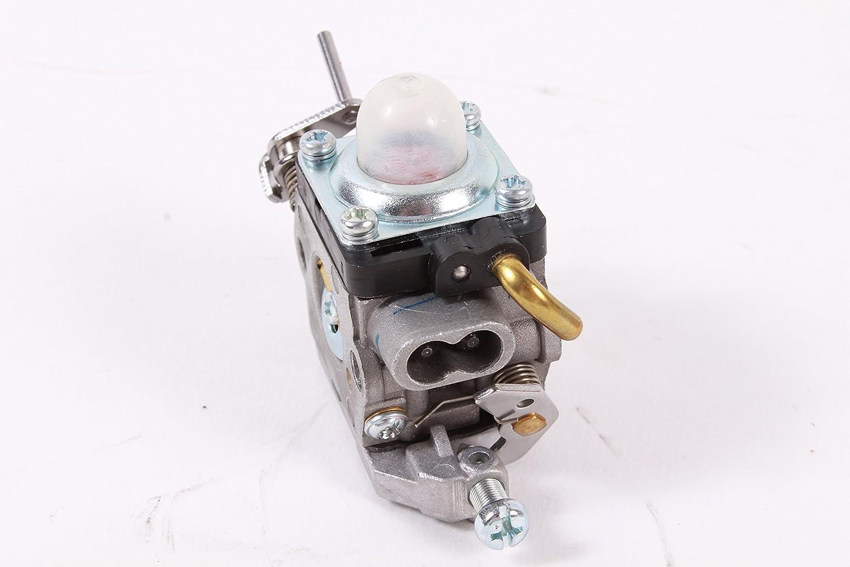 Amazon.com: Original de Husqvarna 581734301 carburador para ...