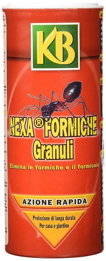 Nexa Formiche Granuli Da 300 Grammi Amazonit Giardino E Giardinaggio