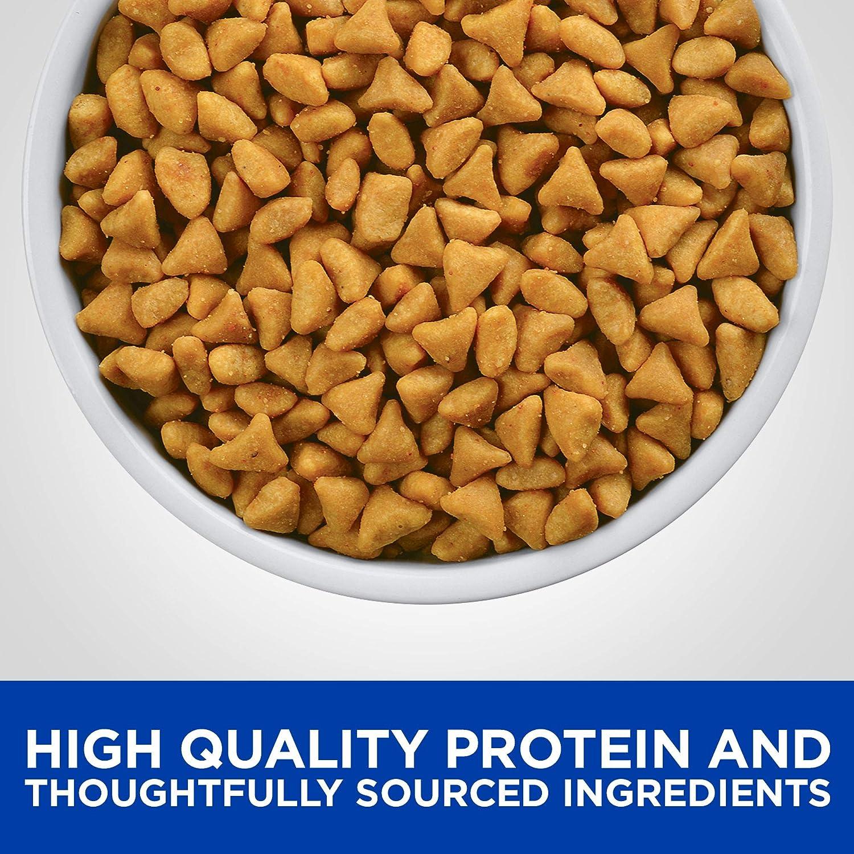 Mejor comida de ingredientes limitados para gatos [year] (análisis) 5
