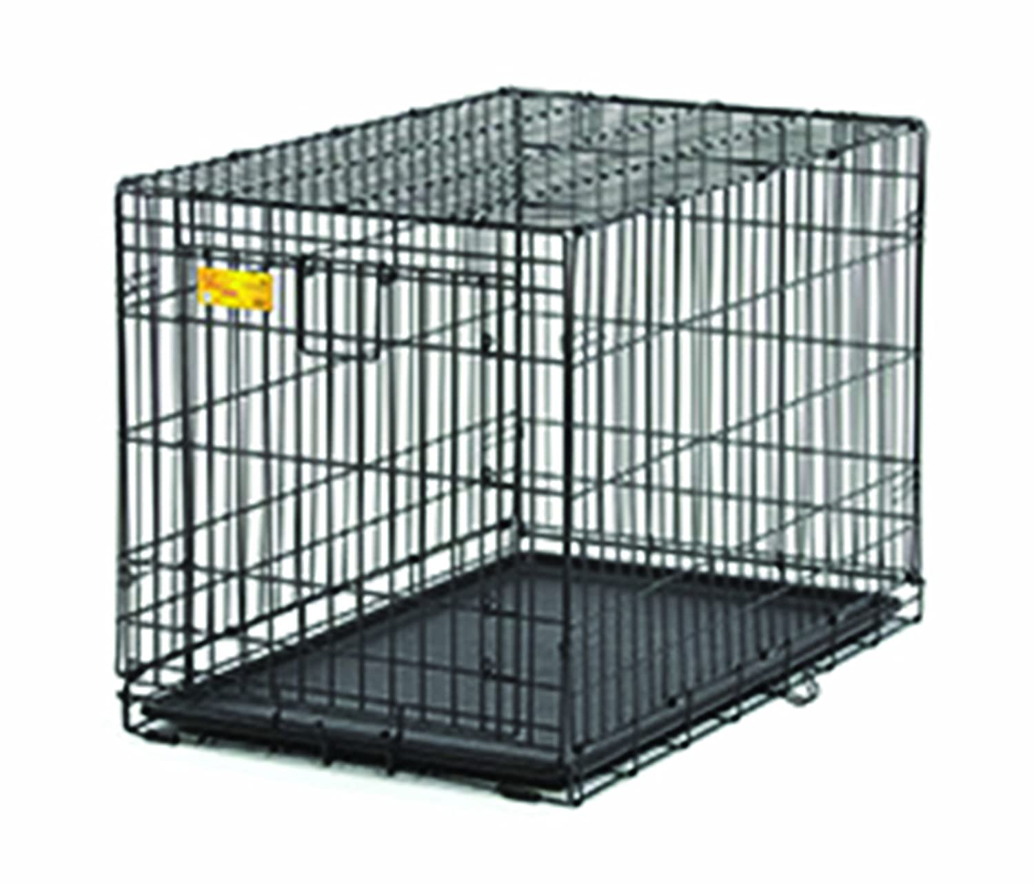 Amazon.com : MidWest Homes for Pets Life Stages ACE Dog Crate, 42 ...