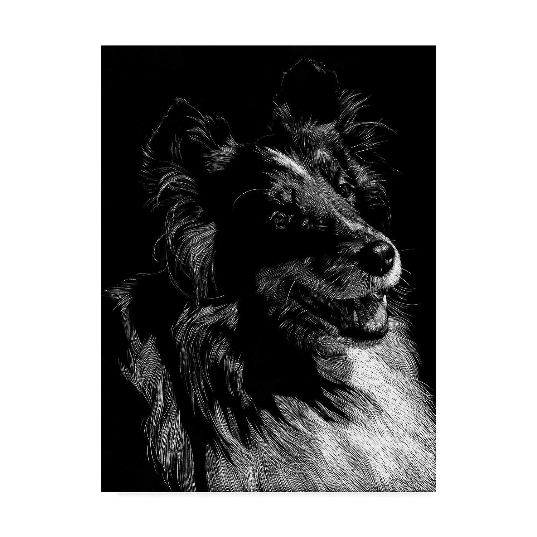14x19\ Trademark Fine Art Canine Scratchboard Xi by Julie T. Chapman, 14x19Inch