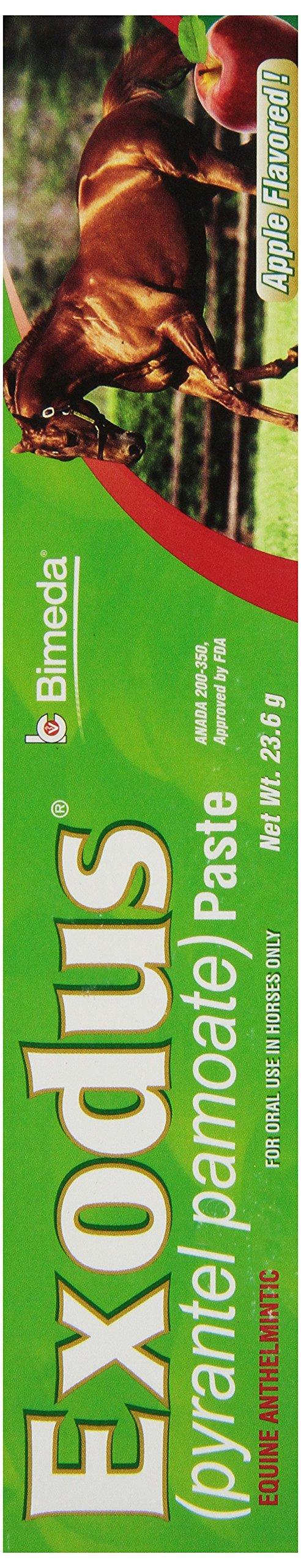 IVESCO 6850007 Exodus Equine Deworm Paste for Horses, 23.6gm