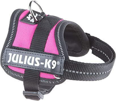Julius-K9 PowerHarness para perros, color Rosa oscuro, talla Baby 1