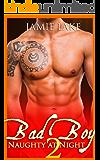 BOOK 2 - Bad Boy   Gay Romance MM Boyfriend Series: Bad Boy: Naughty at Night Gay Romance Novels (Bad Boy: Naughty at Night Gay Romance Books)