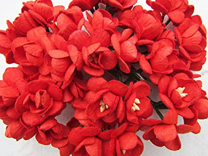 Amazon 50 pcs cherry blossom red mulberry paper flower 25 mm 50 pcs cherry blossom red mulberry paper flower 25 mm scrapbooking wedding doll house supplies card mightylinksfo