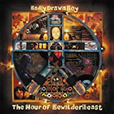The Hour of the Bewilderbeast [12 inch Analog]