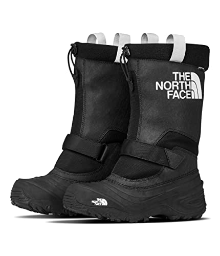 175b6ab07 The North Face Alpenglow Extreme III Boot Kids