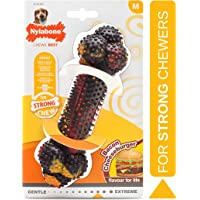 Nylabone Flavor Frenzy Strong Chew Toy Dog Toy Bacon & Cheeseburger Flavor Medium/Wolf - Up to 35 lbs.