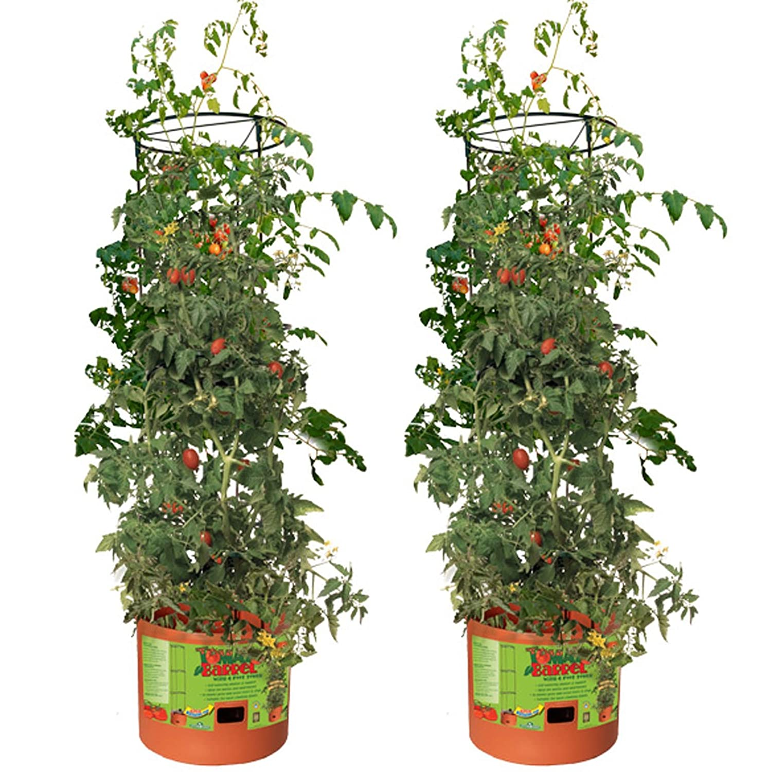 Amazon Hydrofarm Tomato Barrel Pot Garden Planters w 4 Foot