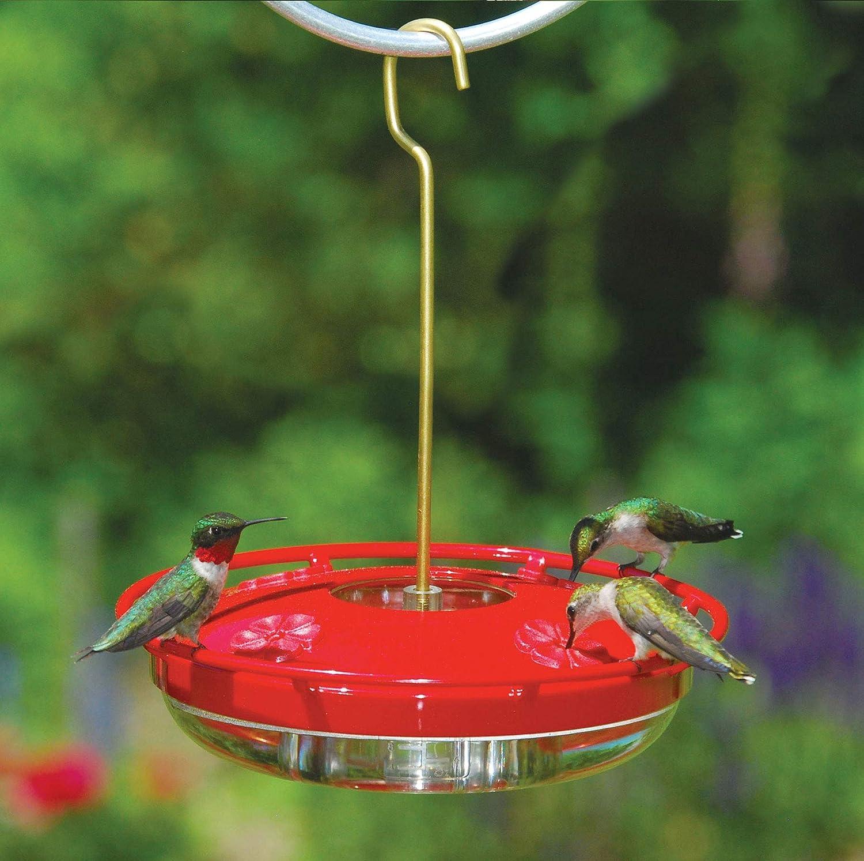 Amazon Com Aspects Hummzinger Highview 12 Oz Hanging Hummingbird Feeder 429 Red Wild Bird Feeders Garden Outdoor