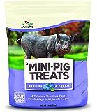 Manna Pro Mini Pig Treats Berry & Cream, 4 lb