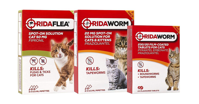 Ridaflea Pipetas de aplicación Directa para Gatos, 3 Piezas: Amazon.es: Productos para mascotas