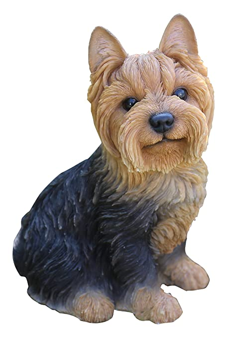 Amazon.com: hi-line regalo Ltd perro, Yorkshire Terrier ...