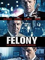 Felony [dt./OV]