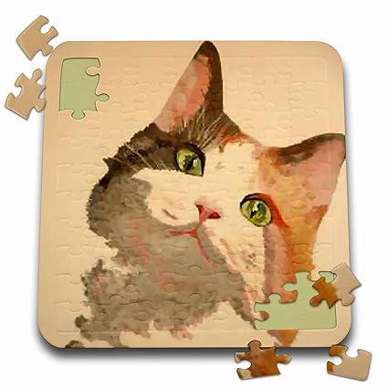 Amazon.com: Taiche – pintura acrílica – Calico gatos – Im ...