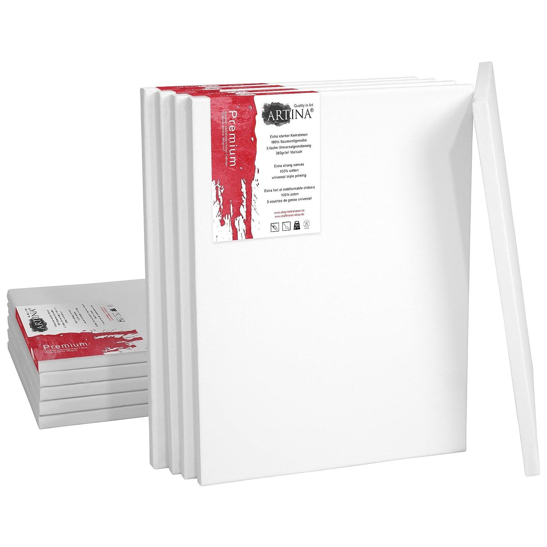 barato y de alta calidad Artina Set DE 10 lienzos lienzos lienzos Blancos de 100% Algodón con bastidores robustos - Calidad >Premium< - 380 g/msup2; - 60x140 cm  Todos los productos obtienen hasta un 34% de descuento.