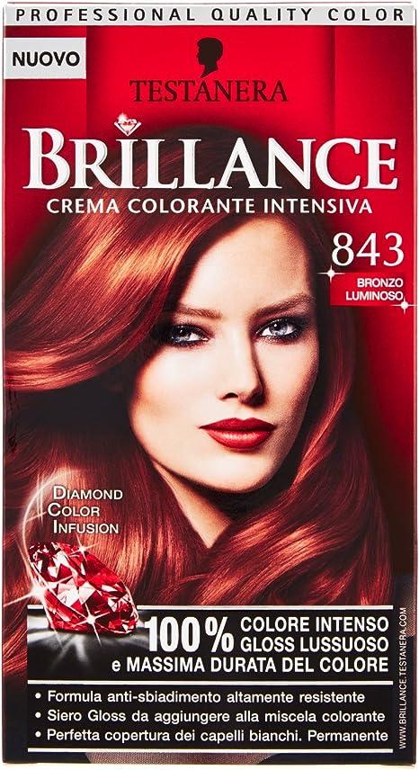 TESTANERA Brillance 843 Luz Y Color Bronce Tinte: Amazon.es ...